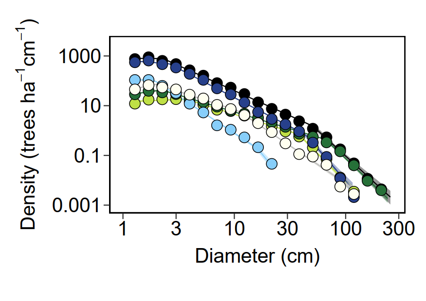 Tree density by size on BCI - figure by QDR